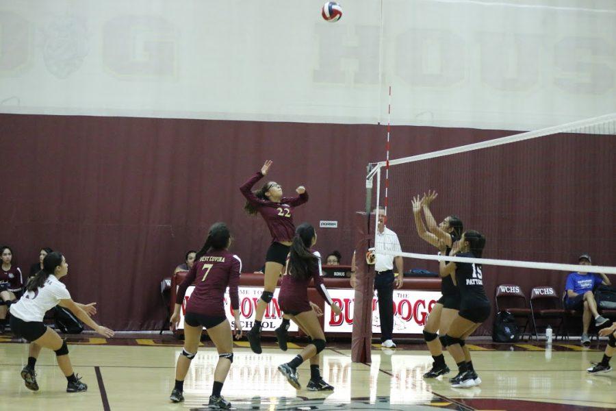 Photo Gallery: Girls Volleyball vs. Diamond Ranch